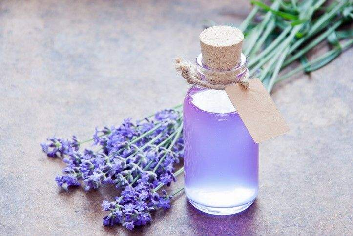Lavender to help you relax, ease anxiety and sleep